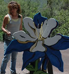 The columbines of the 38th Telluride Bluegrass